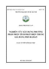 Luận án Nghiên cứu xây dựng phương pháp phân tích phát hiện thuốc giả bằng phổ raman