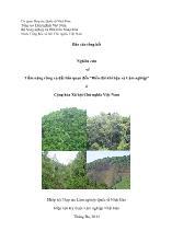 """Nghiên cứu về Tiềm năng rừng và đất liên quan đến """"Biến đổi khí hậu và Lâm nghiệp"""" ở Cộng hòa Xã hội Chủ nghĩa Việt Nam"""